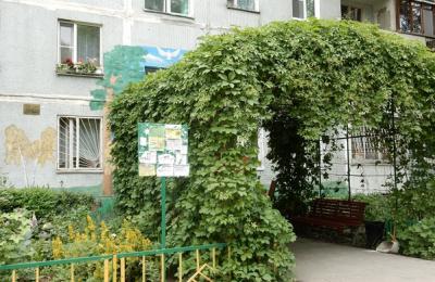 В Москве могут начать вертикальное озеленение