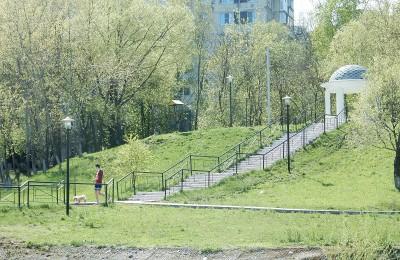 16 деревьев и свыше 600 кустарников высадят в районе Чертаново Южное