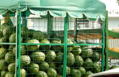 В районе Чертаново Южное оборудуют четыре точки по продаже бахчевых
