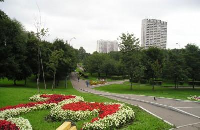В Южном округе в эти выходные жители смогут посетить фестиваль «Русское поле», побывать на «Ночи кино» и концерте Tesla Boy