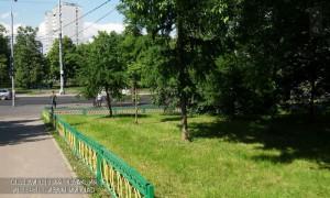 Озеленение в районе Чертаново Южное