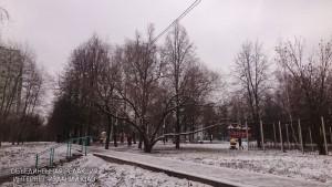 Три голубятни установят на улице Подольских Курсантов