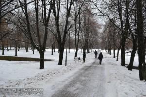 """Жители района смогут определить программу мероприятий в парке """"Битцевский лес"""""""